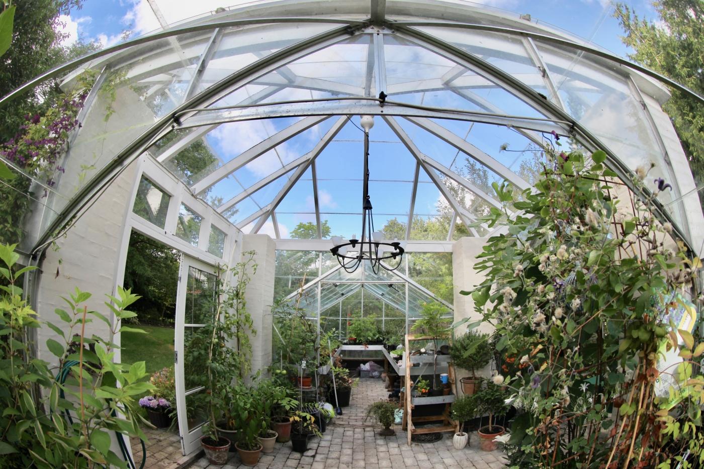 Opdateret Er der forskel på et orangeri og et drivhus? - Drivhusklubben.dk WQ17